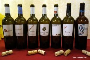 Los vinos 30-01-2013 22-15-56.56