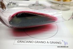 Copa Graciano grano a grano 2010 31-01-2013 22-33-27.27