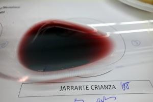 Copa Jarrarte Cr 2008 31-01-2013 22-39-10.10