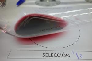Copa Seleccion 2010 31-01-2013 22-34-45.45