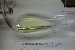 Copa Tempranillo blanco 2011 31-01-2013 22-38-10.10