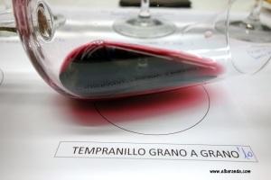 Copa Tempranillo grano a grano 2010 31-01-2013 22-33-02.02