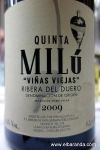 VV para Pilar 2009